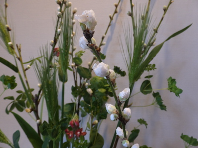 オークリーフ花の教室(春の花木を使って)_f0049672_1848769.jpg