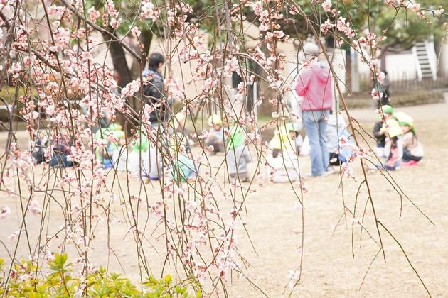 そこは春!!_e0305388_9281237.jpg