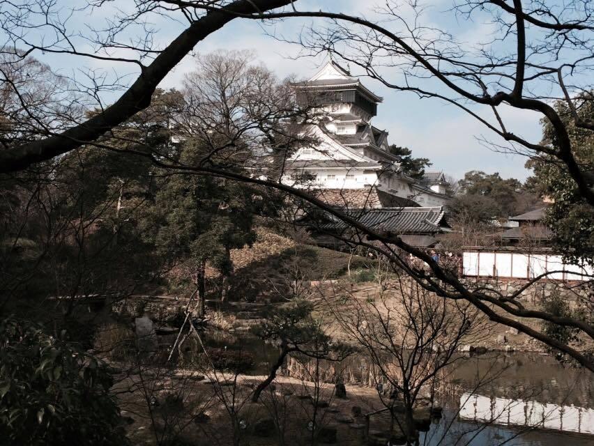 庭園越しに見える小倉城…_d0082356_17240461.jpg