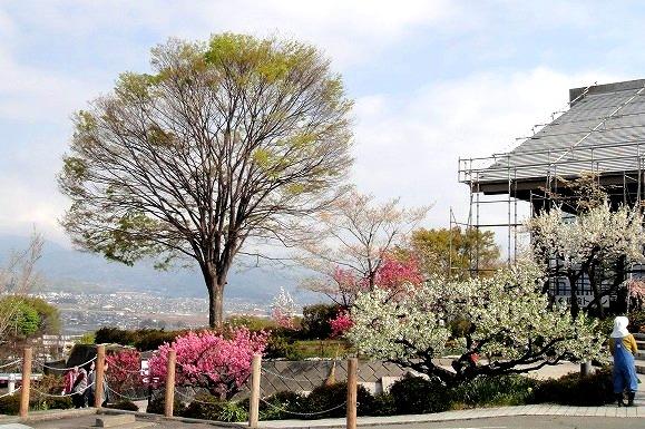 <2014年4月>諏訪探訪②:諏訪湖・茅野の縄文遺跡探訪レビュー_c0119160_21255835.jpg