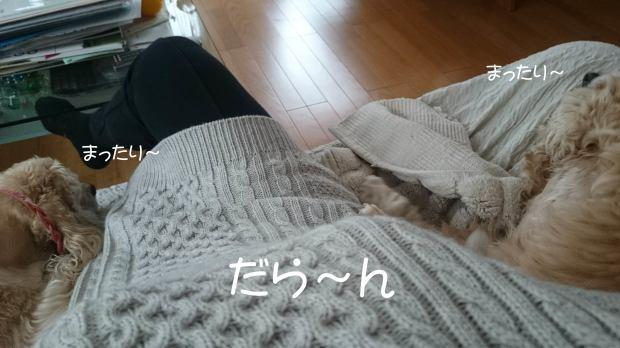 f0218182_19021307.jpg