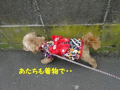 桃の節句に桃太郎_e0222588_17265731.jpg