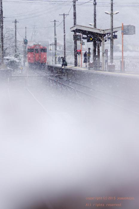 雪の中を去りゆく_d0309612_22534433.jpg