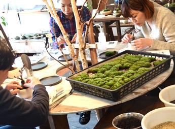 3/15(日)桜盆教室 参加者募集中です_d0263815_171248.jpg