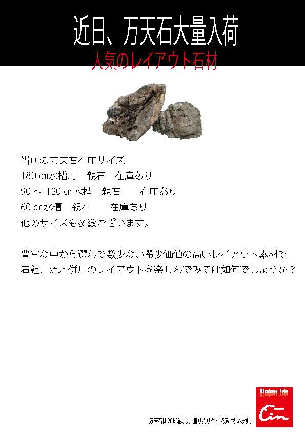 e0134470_1029736.jpg
