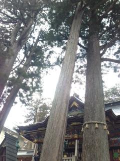 三峯神社ヨガリトリート 後記_f0187875_1292146.jpg
