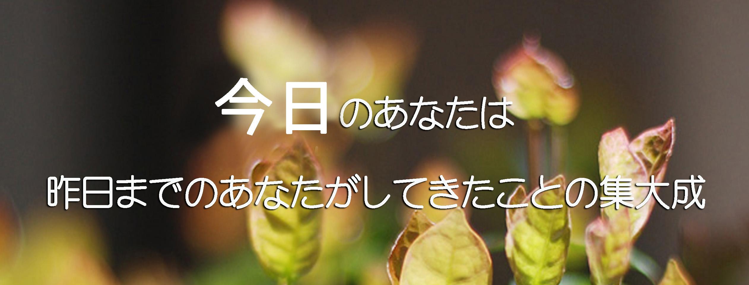 f0215487_18254173.jpg