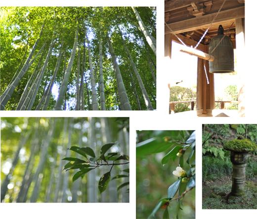 春の鎌倉散歩。_d0174704_22194891.jpg