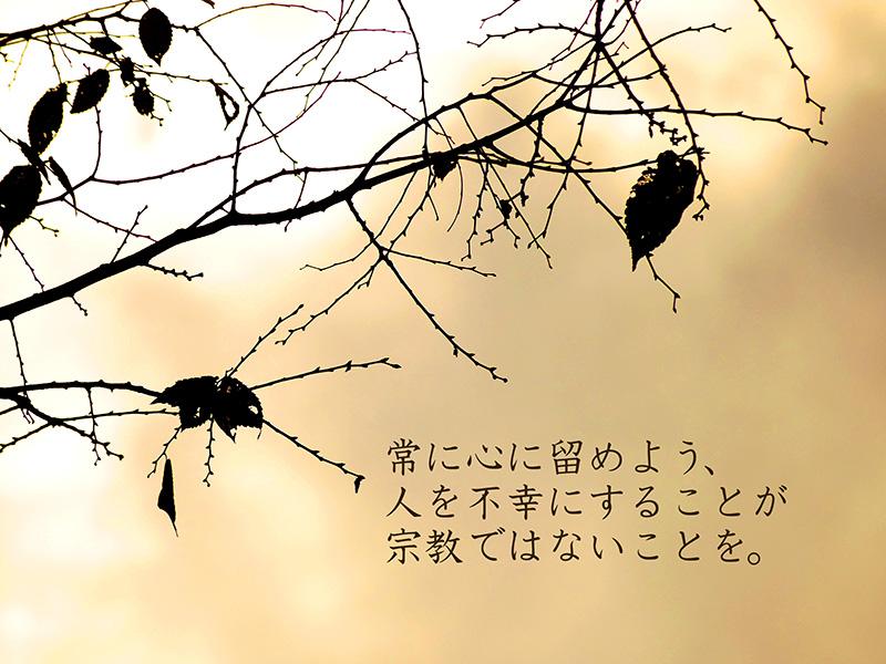 b0133911_207435.jpg