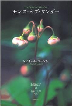 3月12日(木)上遠恵子さんのお話を聴く会_e0016830_03293712.jpeg
