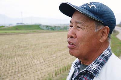 砂田米 れんげの成長!今年も緑肥として育て、田んぼでは米しか作らんばい!!_a0254656_1864042.jpg