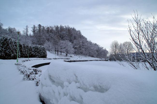 3月の雪_d0162994_9323595.jpg