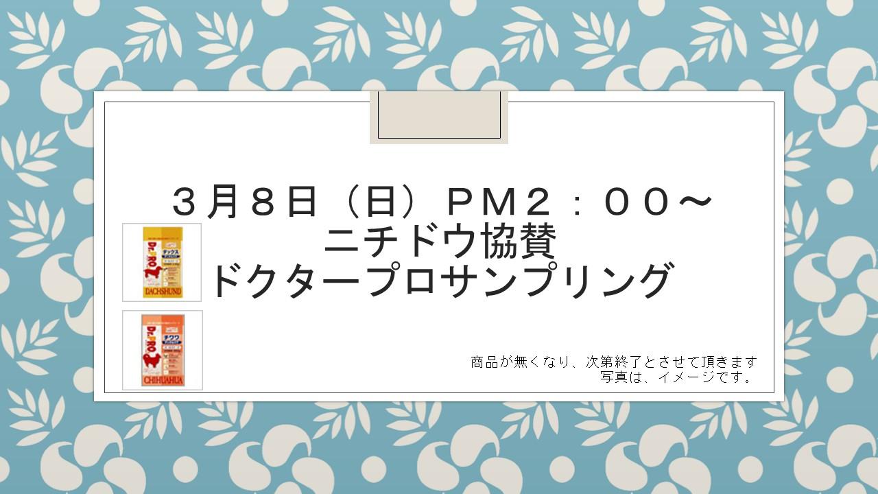 150306 3月8日(日)イベント告知_e0181866_14481473.jpg