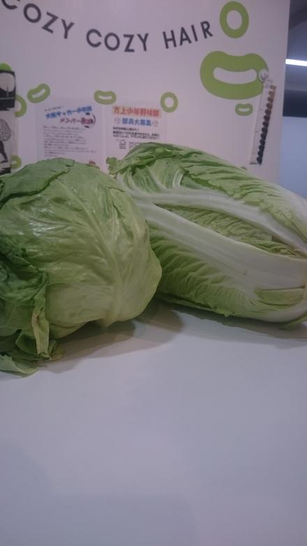 お野菜_f0172281_543766.jpg