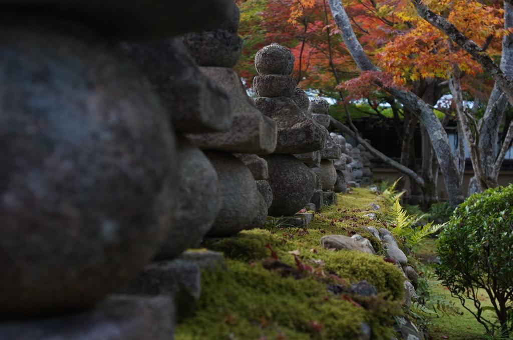 帰国日記@ベルリン 37 紅葉の京都!_c0180686_17510833.jpg