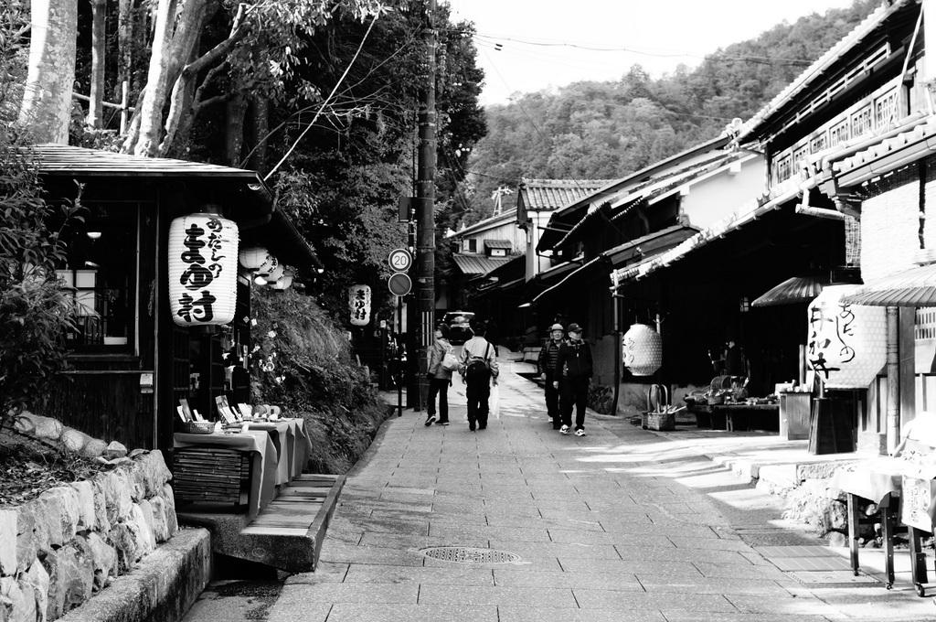 帰国日記@ベルリン 37 紅葉の京都!_c0180686_17513994.jpg