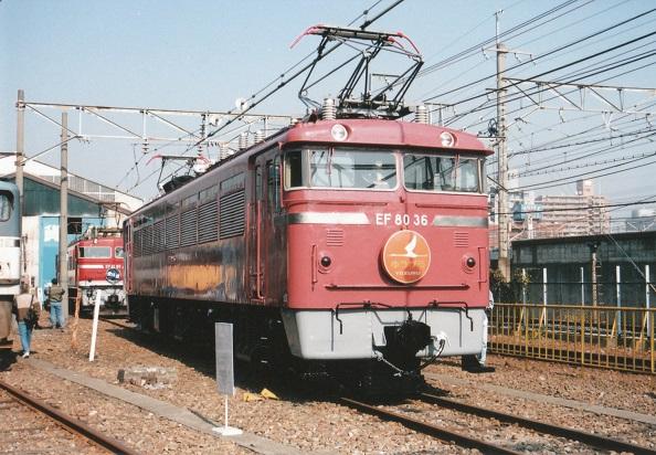 鉄道博物館へ行ってきました(その4・新幹線高架下で本気出す)_c0155803_1632384.jpg