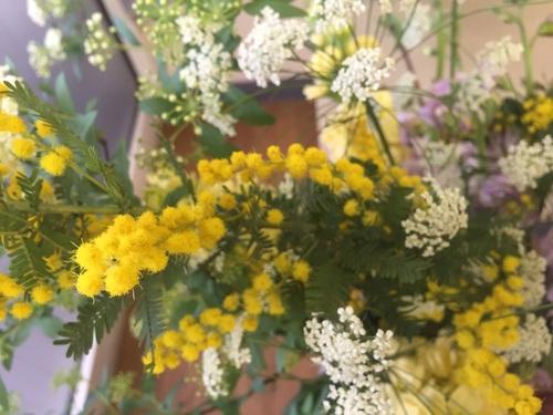 花粉症やほこりも拭き掃除でバイバイ♪♪_a0200423_10461151.jpg