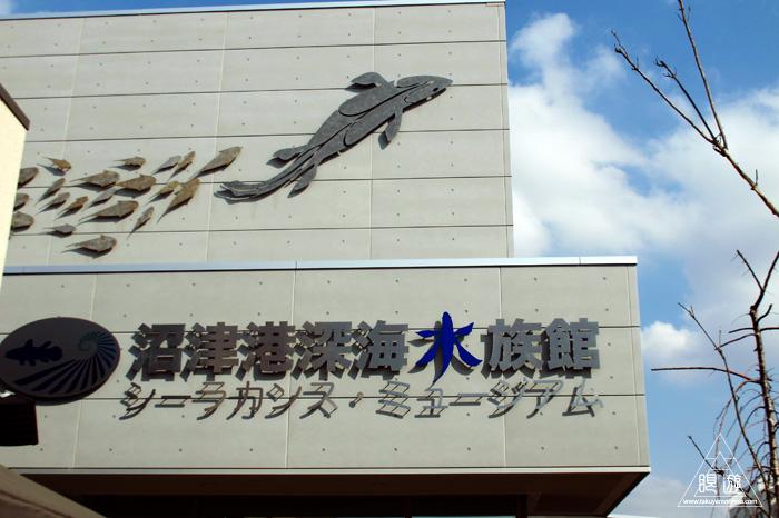 444 沼津港深海水族館 ~日本一の深海水族館~_c0211532_23311384.jpg