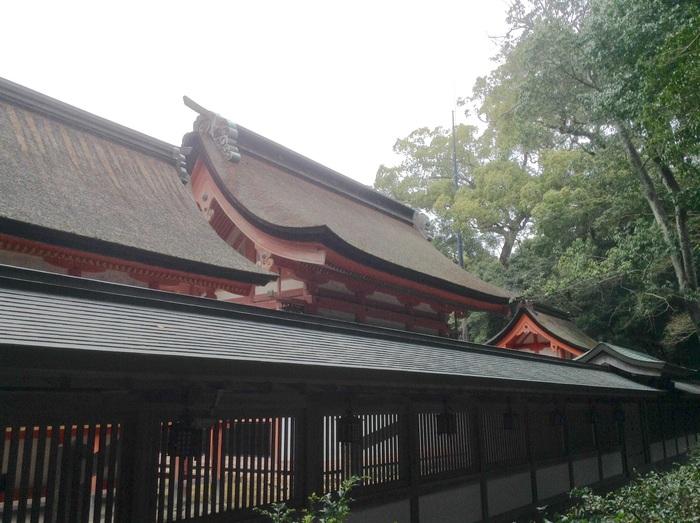 満月の日の大山祇神社参拝◎_f0183846_20215359.jpg