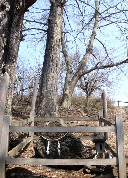 <2014年4月>諏訪探訪②:諏訪湖・茅野の縄文遺跡探訪レビュー_c0119160_9195280.jpg