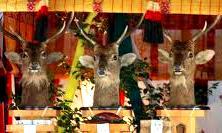 <2014年4月>諏訪探訪②:諏訪湖・茅野の縄文遺跡探訪レビュー_c0119160_934480.jpg
