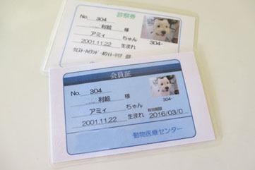犬の保険に入っていますか?_b0107163_03102559.jpg
