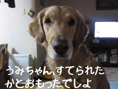 b0008217_10113142.jpg