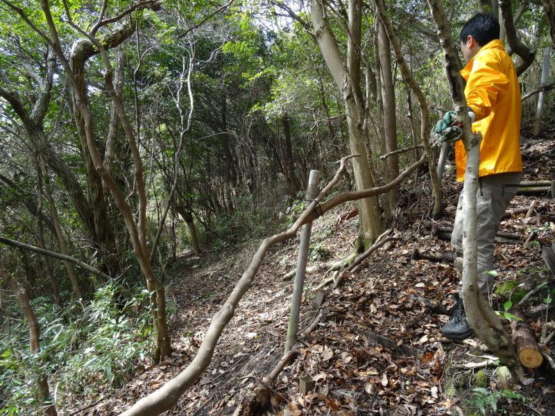 ぼうけん山の新山道の確認  in  うみべの森_c0108460_15554755.jpg