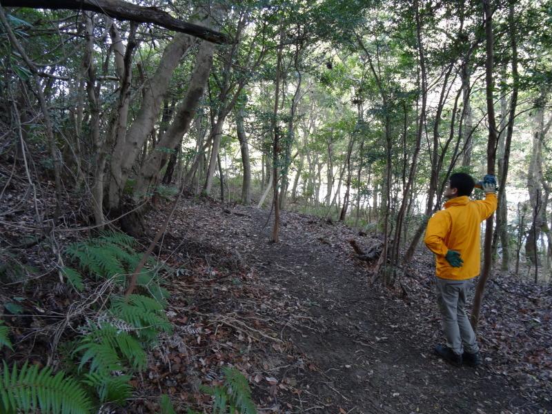 ぼうけん山の新山道の確認  in  うみべの森_c0108460_15555652.jpg