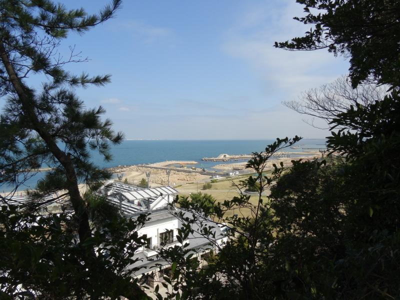 ぼうけん山の新山道の確認  in  うみべの森_c0108460_16260272.jpg