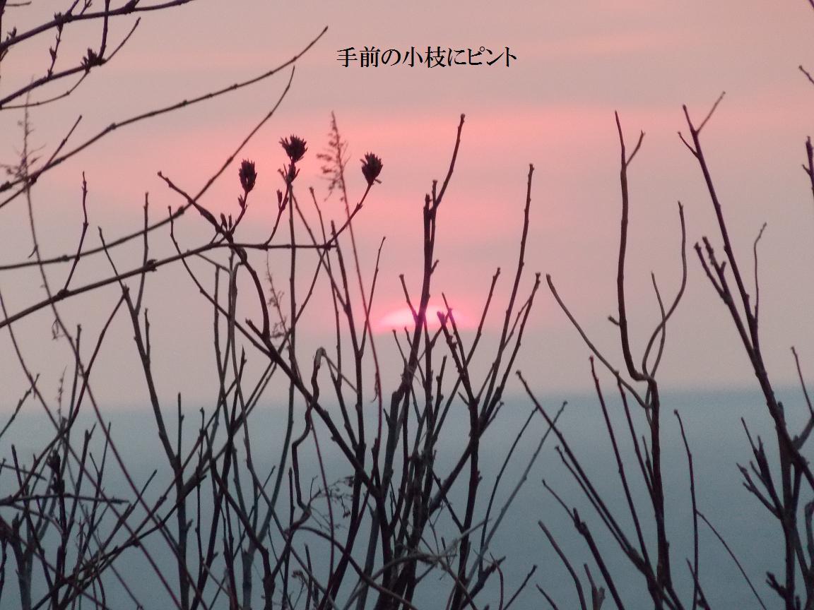 b0193252_22341973.jpg