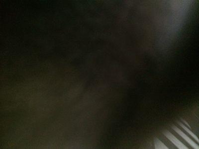 d0220457_1255887.jpg
