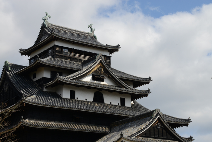 松江城写真_e0171573_1643944.jpg