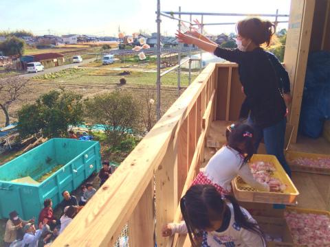 寺島 Iさんの家 ★大工工事_d0205883_848353.jpg