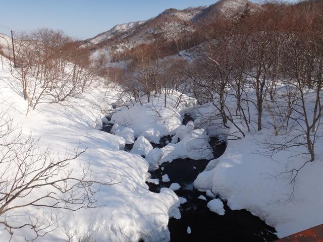 Nature  /  kushiro & rausu_b0195093_08452509.jpg
