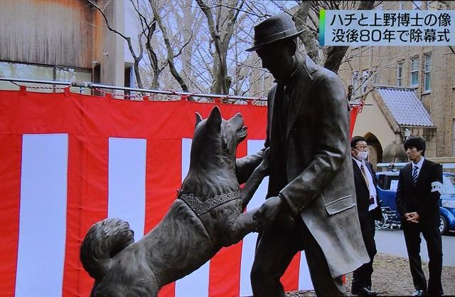 「ハチと上野博士の像」そして、ハチさん_c0124100_2122127.jpg