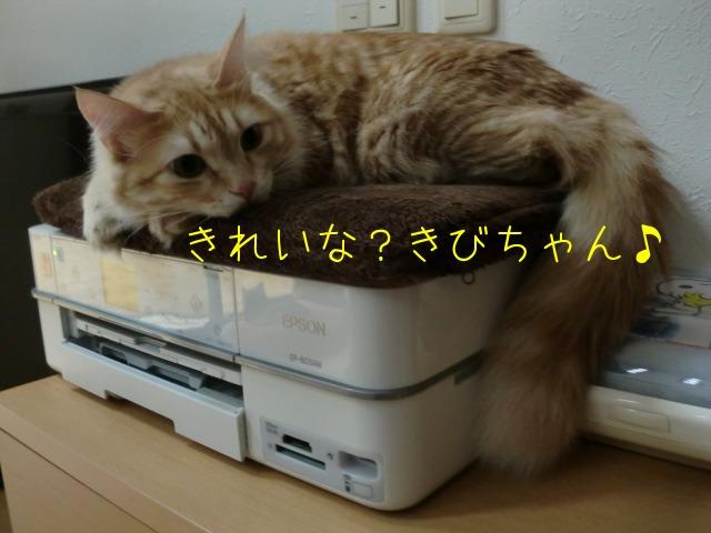 c0259945_15201032.jpg
