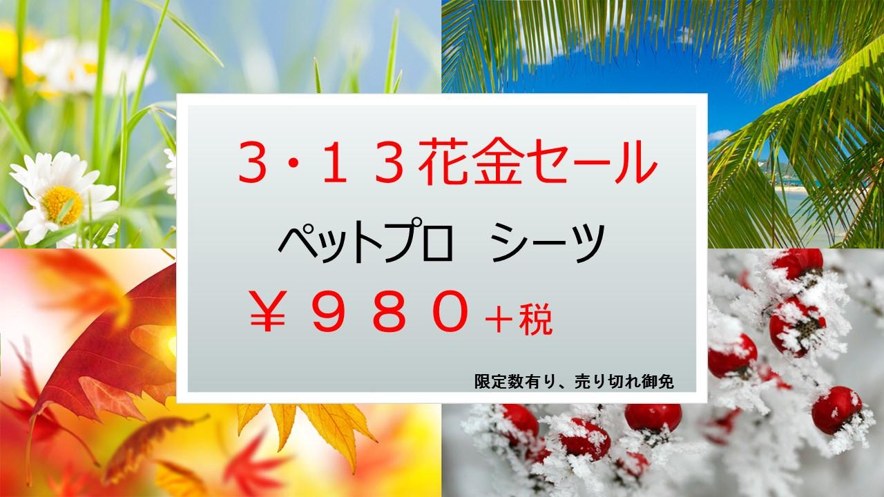 150310 花金セール_e0181866_10522443.jpg