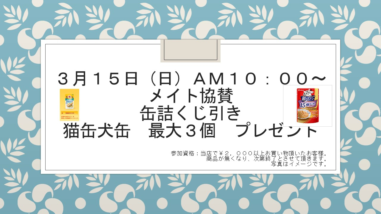 150310 イベント告知_e0181866_10584373.jpg