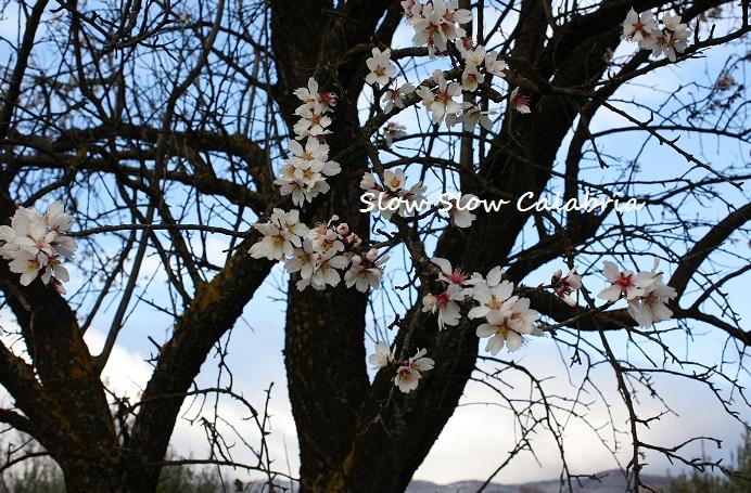 3月8日は、女性の日♪_c0171485_23362724.jpg