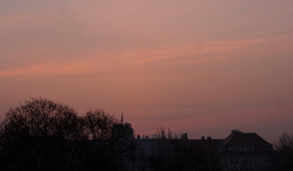 春の朝、3月10日。_c0180686_15443607.jpg