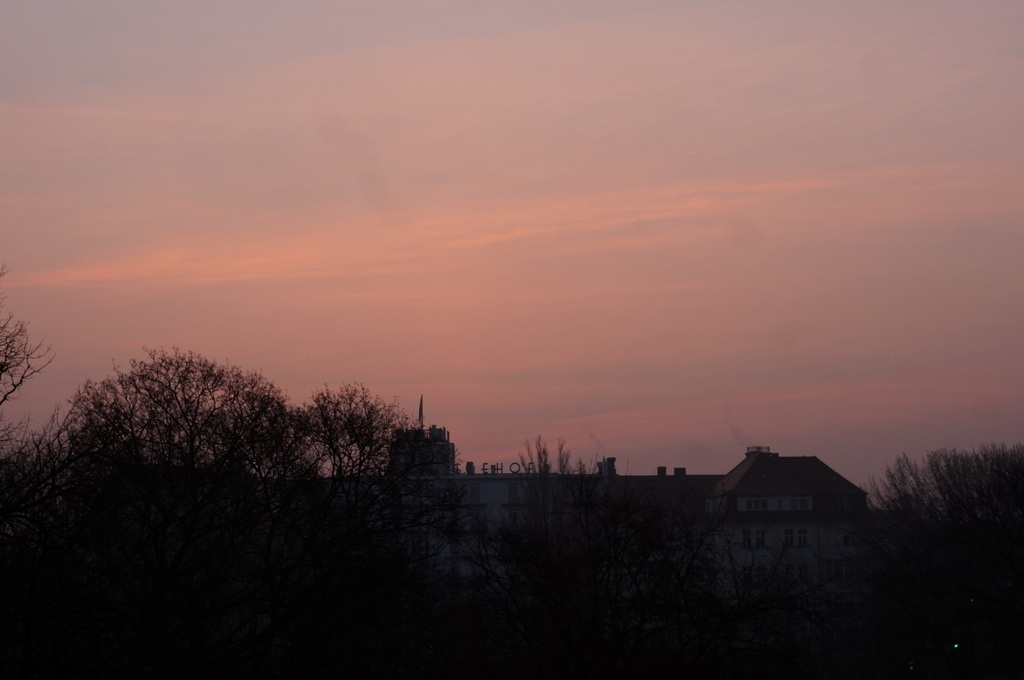 春の朝、3月10日。_c0180686_15450110.jpg