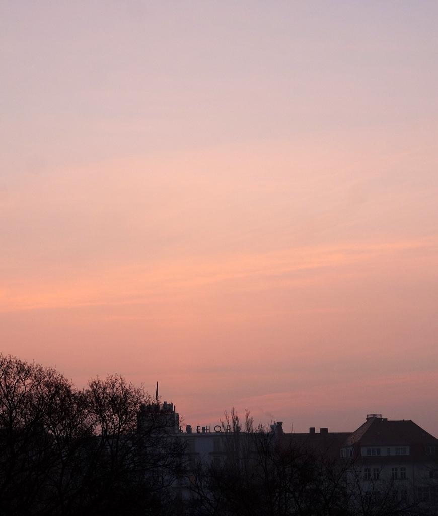春の朝、3月10日。_c0180686_15460319.jpg