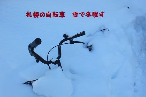 b0005792_1374636.jpg