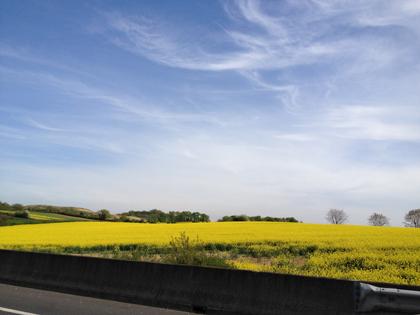 C\'est bientôt le printemps ?_f0038600_22231397.jpg