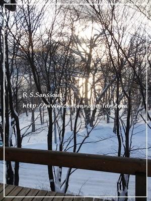 支笏湖の温泉へ_d0222715_16373116.jpg