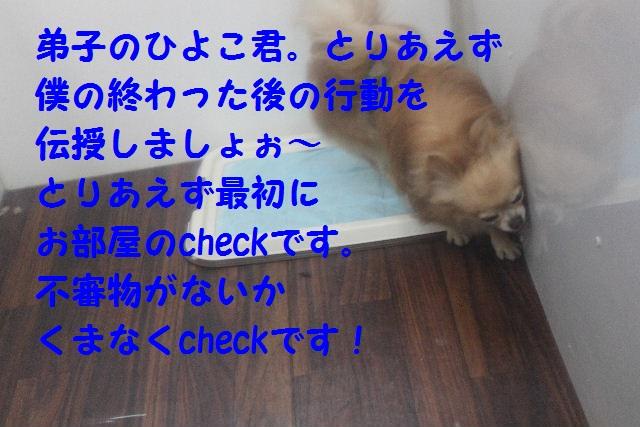 b0130018_18494656.jpg