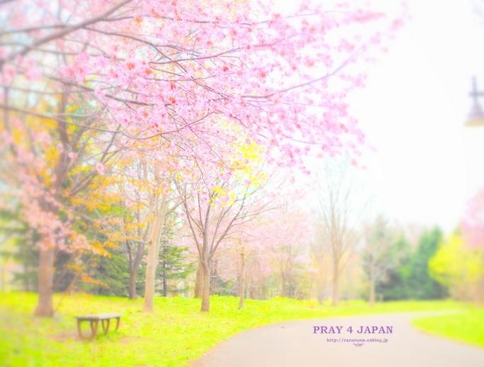 東日本大震災から4年。祈りをこめて…_f0357923_1857726.jpg