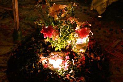 2015年3月15日(日)ディナータイムパーティー『初 星 花 凜』_a0083140_7393775.jpg